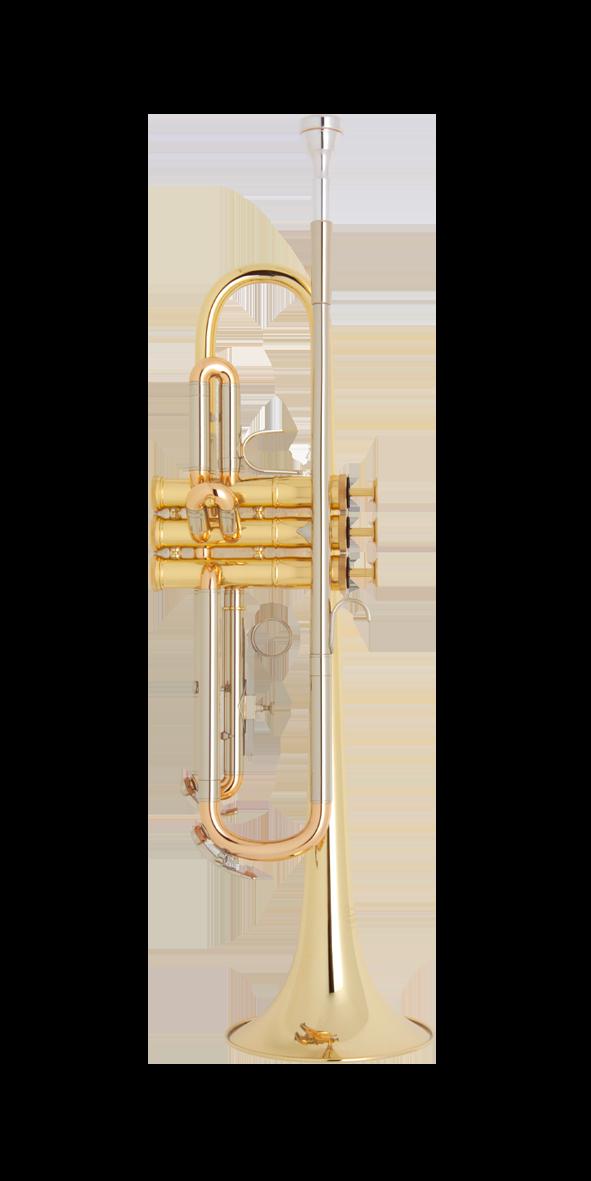 B-Périnettrompete Freya