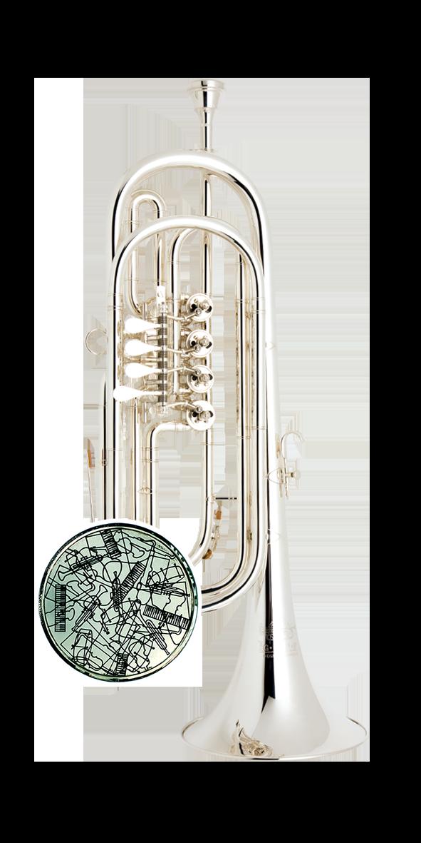 C-Basstrompete